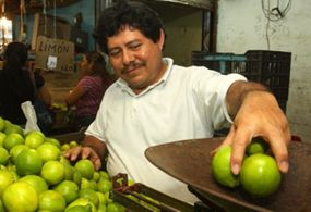 Promedia precio del limón en Sonora a 40 pesos por kilo: Profeco