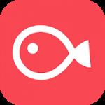 Vimo App
