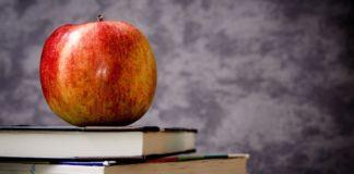 Fechas importantes del calendario escolar 2019 de la SEP